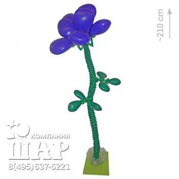 Фиолетовая роза из воздушных шаров