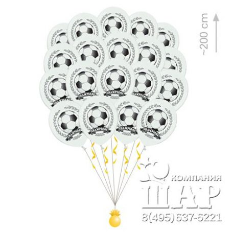 """Облако воздушных шаров """"Футбол"""""""