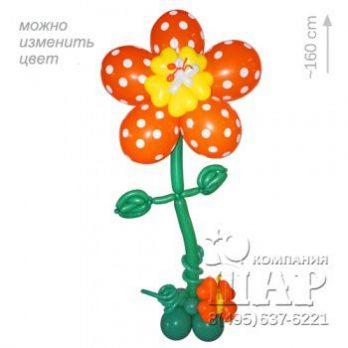 Цветок из шаров «Каркаде»