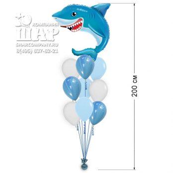 Букет из шаров «Я акула туруру»