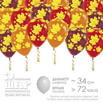 Гелиевые шары «Кленовые листья»