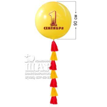 Большой шар «1 сентября»