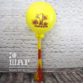 "Большой шар ""1 сентября"""